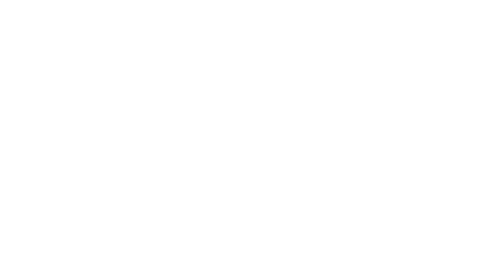 Fulcrum Professional Development